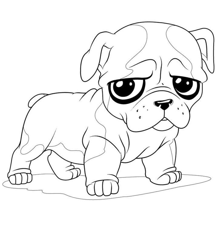 736x775 Baby Puppy Coloring Pages