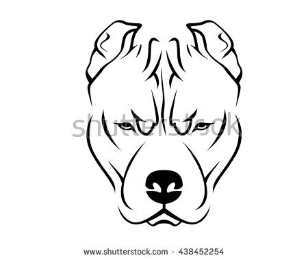 Pitbull Puppies Drawing at GetDrawings com | Free for