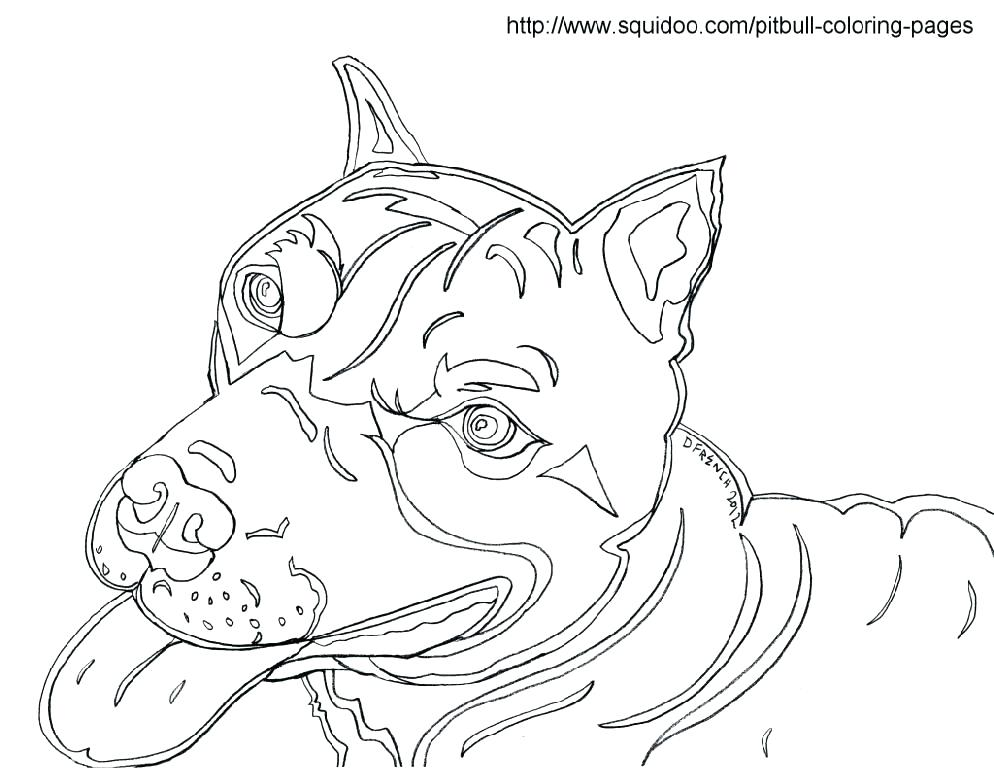 994x768 Coloring Pages Of Pit Bulls Coloring Pages Pit Bull Coloring Pages
