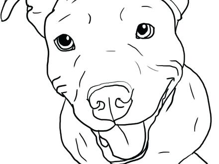 440x330 Coloring Pages Of Pit Bulls Coloring Pages Plus Pin Drawn Pit Bull