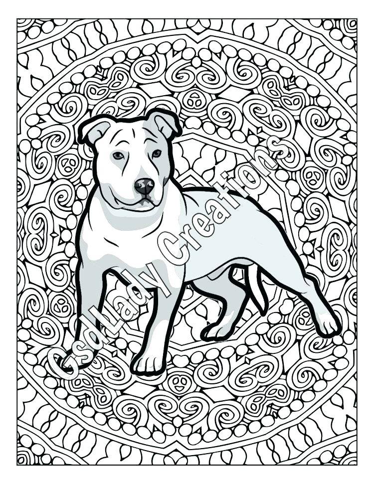 The best free Pitbull drawing images