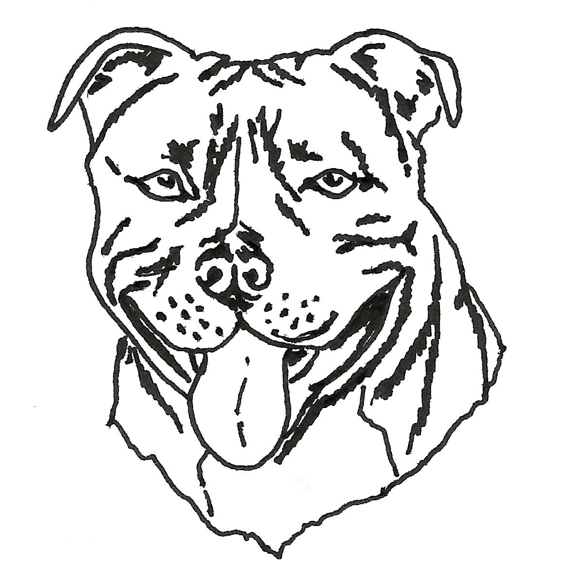 1190x1190 Staffordshire Bull Terrier Drawing Inky Dog Press