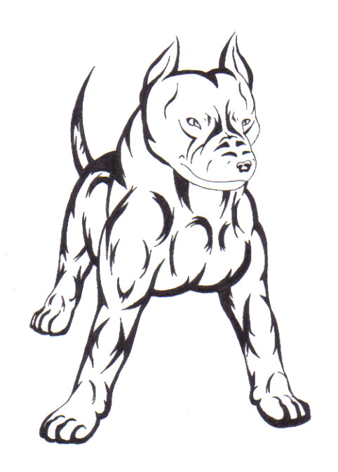 482x672 Drawn Pitbull Wolf