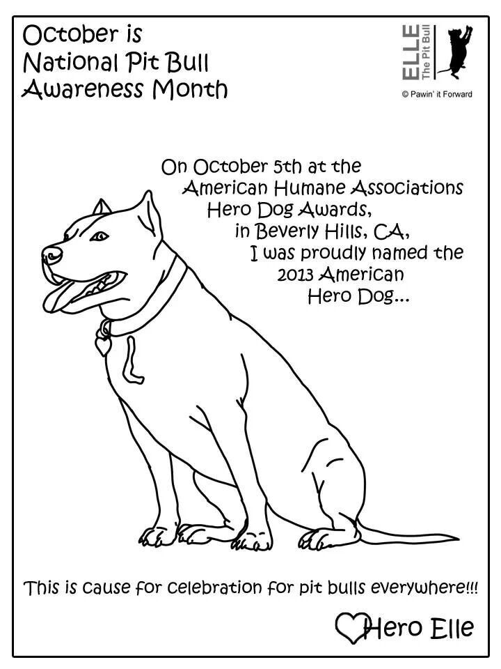 720x960 Pit Bulls Coloring Pages