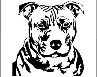 340x270 43 Best Pitbull,pit Bull Dog Signs Images On Pit Bull
