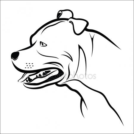 450x450 Pitbull Stock Vectors, Royalty Free Pitbull Illustrations