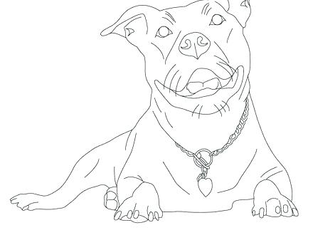 440x330 Coloring Pages Of Pit Bulls Coloring Pages Of Pit Bulls