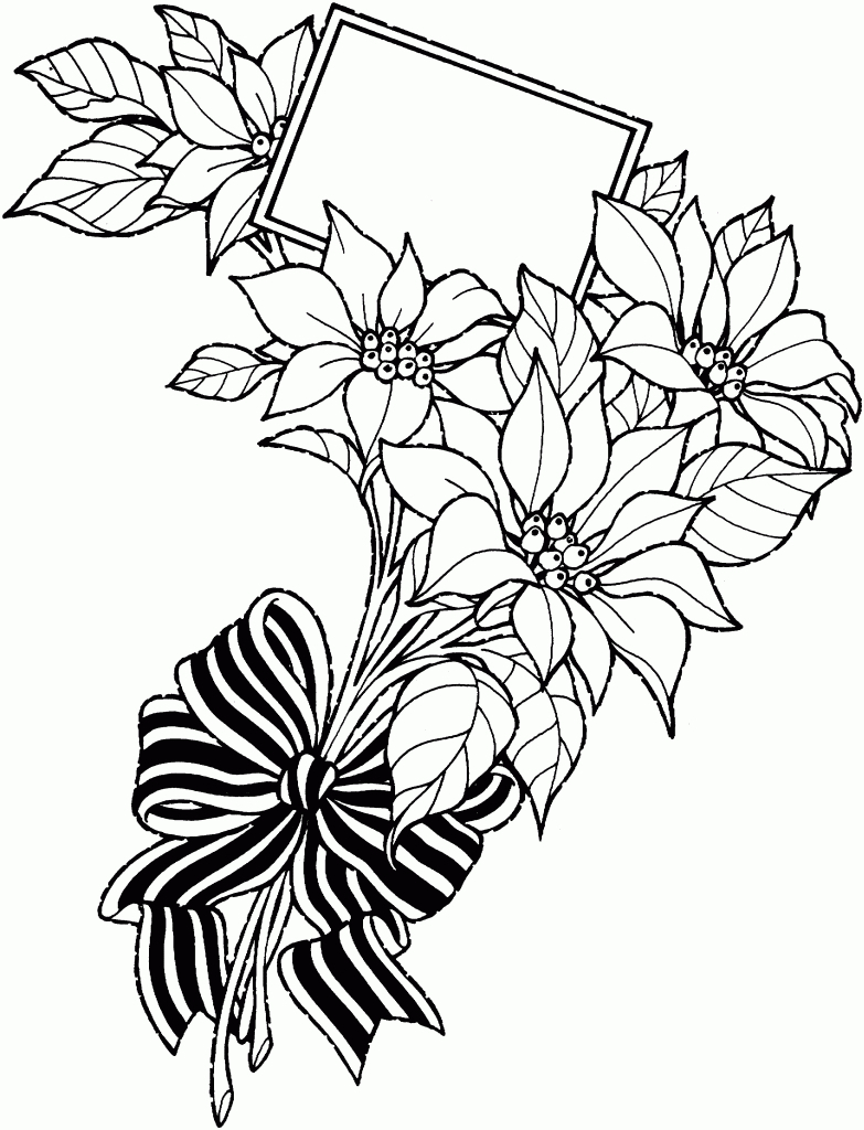 783x1024 Flowers Drawing Art Pictures Pitchers Of Champa Flowers