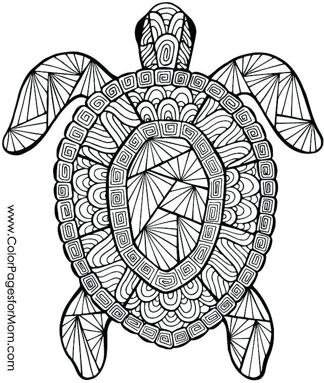 640x755 Coloring Pitchers Of Animals Animal Coloring Page Coloring