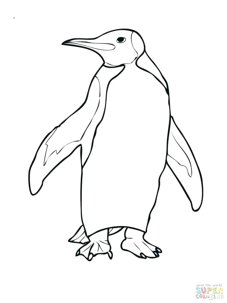 free coloring pages pittsburgh penguins - photo#28