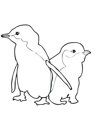 323x430 pittsburgh penguins coloring pages penguin printable coloring - Coloring Page Penguin