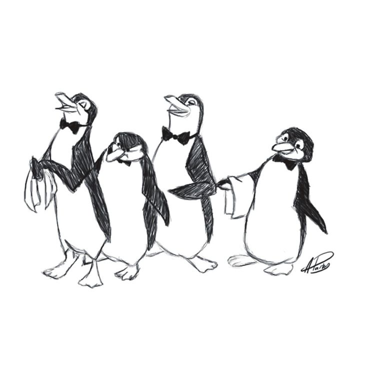 736x736 The Best Penguin Sketch Ideas On Penguin Drawing