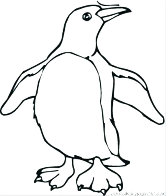 650x767 Coloring Pages Of Penguins