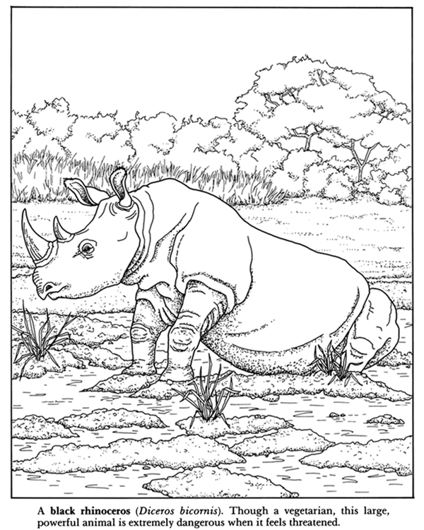 600x750 African Plains Coloring Book Dover Publications Coloring Pages