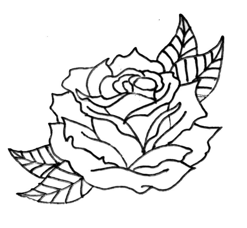 828x765 Rose Clip Art Outline Easy Clipart