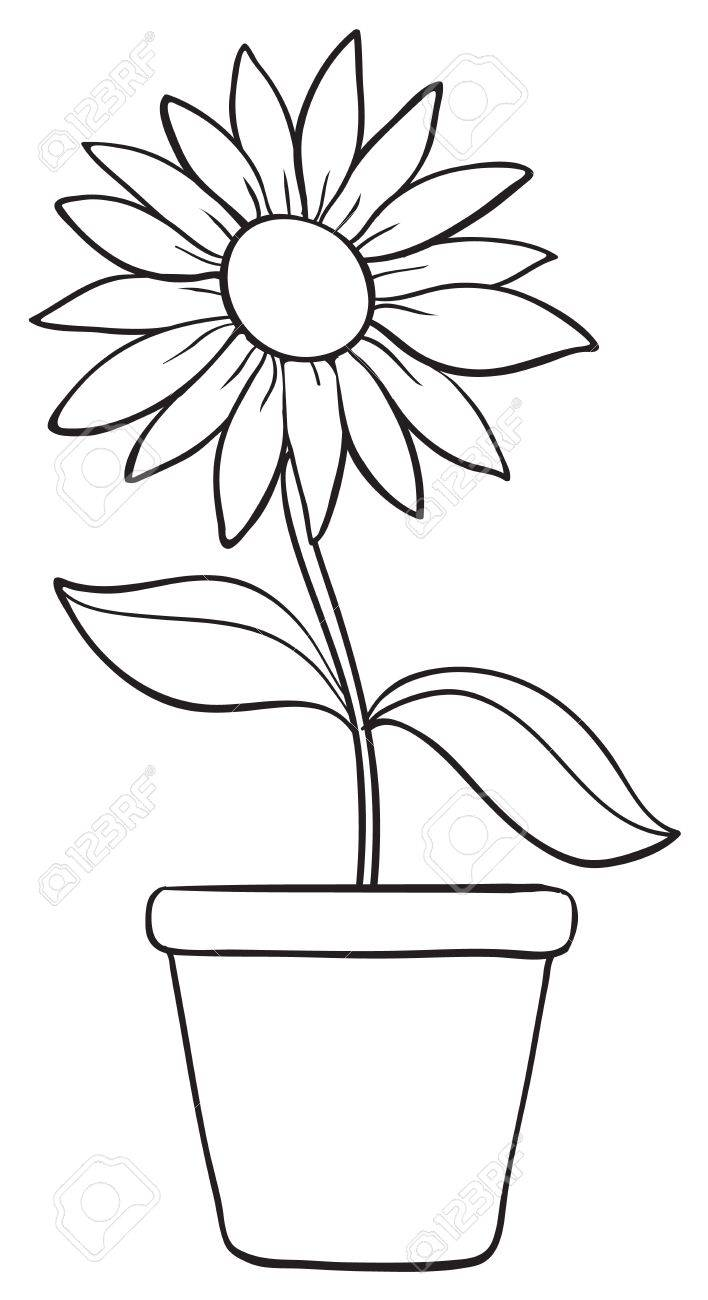 Plant Pot Drawing At Getdrawings Free For Personal Use Plant