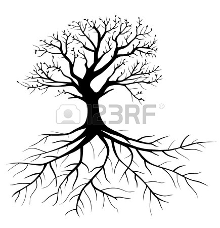 435x450 Whole Black Tree With Roots Isolated White Background Royalty Free
