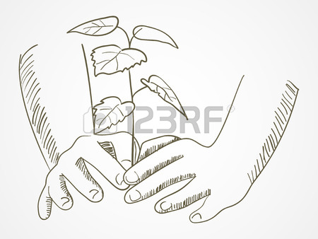 450x338 Line Art Of Hands Planting The Tree Royalty Free Cliparts, Vectors