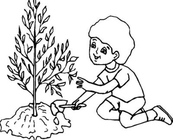 600x488 Celebrating Earth Day By Planting Trees Coloring Sheet Batch