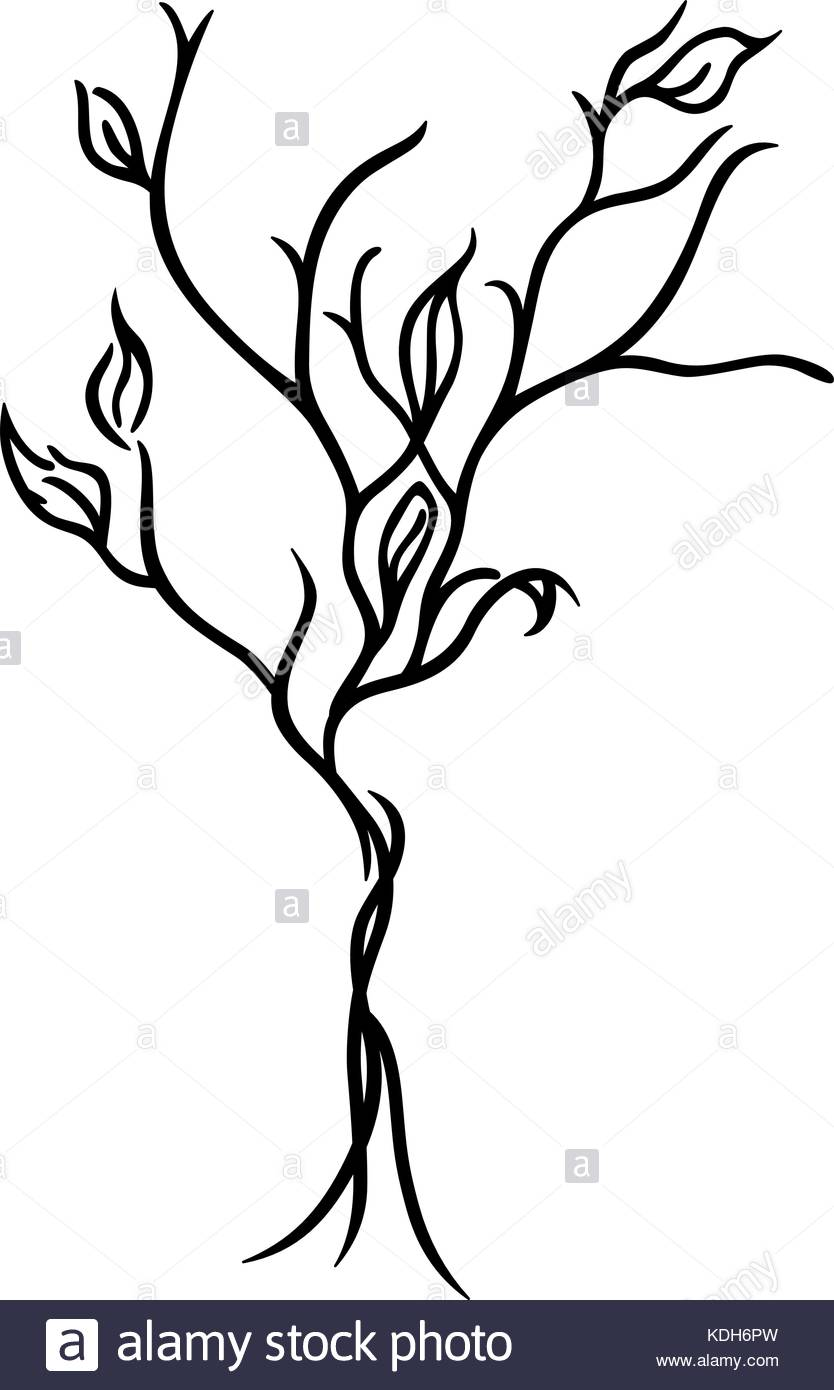 834x1390 Tree Line Drawing Stock Photos Amp Tree Line Drawing Stock Images