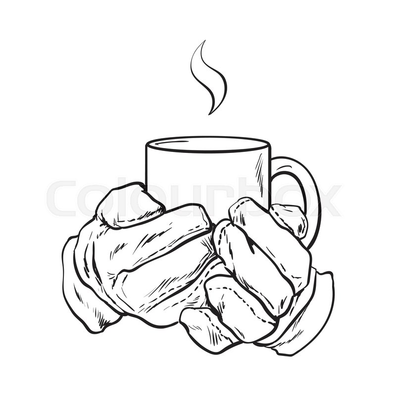 800x800 Well Groomed Female Hand Holding A Cup With Tea Or Coffee, Sketch