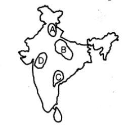241x248 Match The Following Physiographic Regions Of India With Their