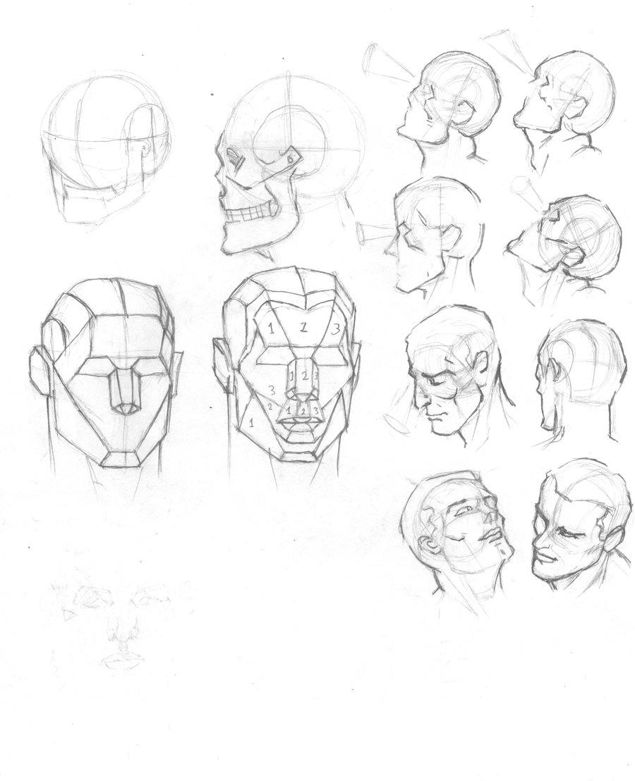 900x1108 Human Head Plates By Atlas0