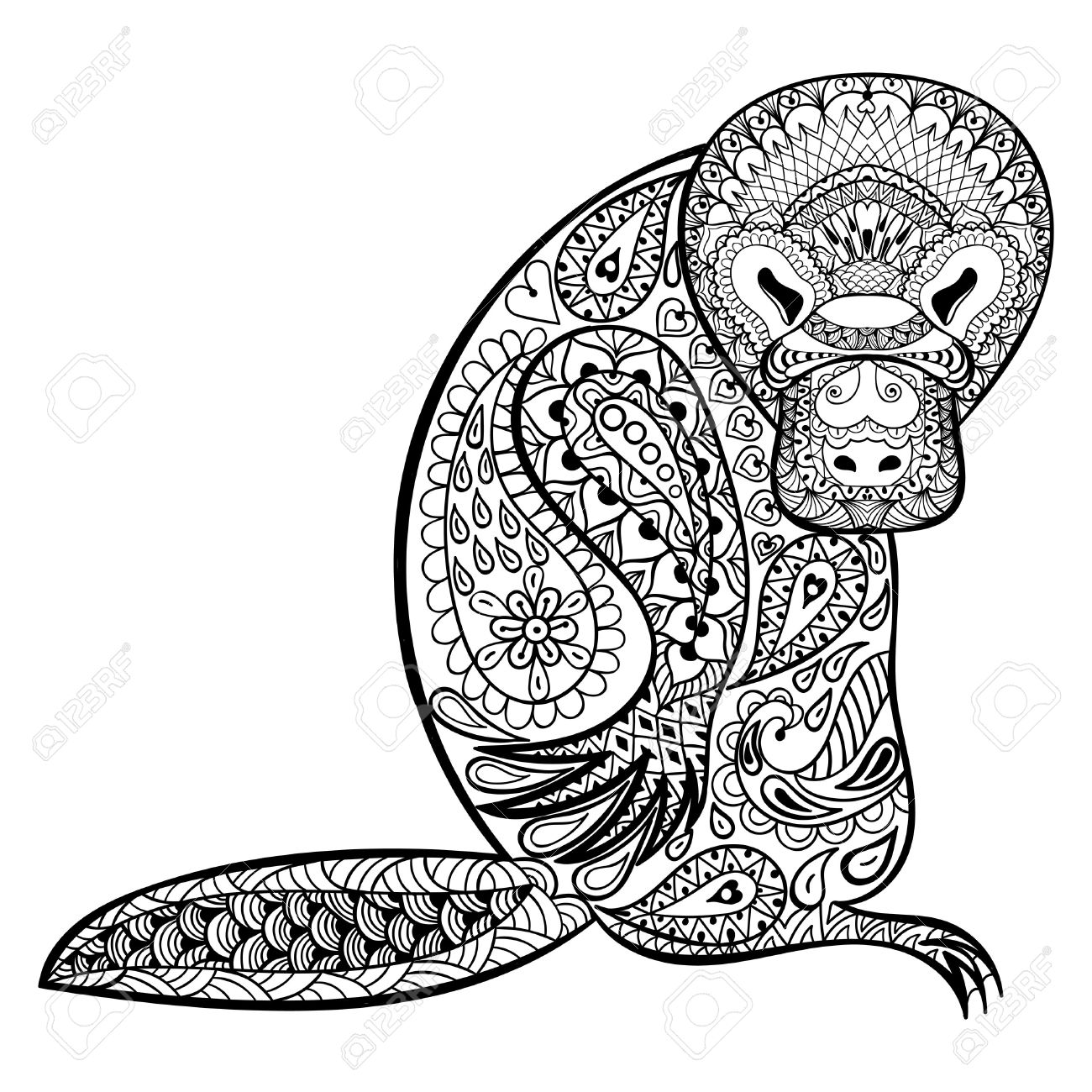 This is a picture of Rare Platypus Coloring Pages