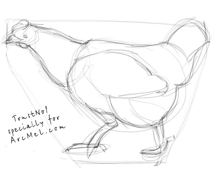 751x600 How To Draw A Hen Step By Step