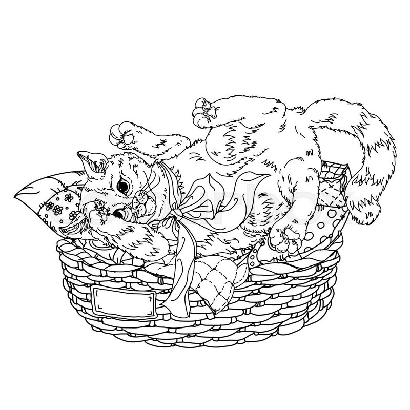 800x800 Uncolored Sketch Illustration In Coloring Book Style Of Playful