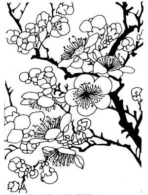 300x396 Plum Blossom Zentangles Doodles