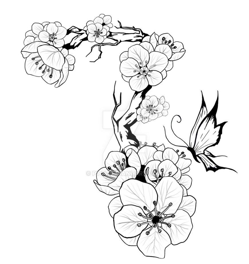 869x920 Plum Blossom Tattoo Design By Pibu Skulls And Other Cool Shit