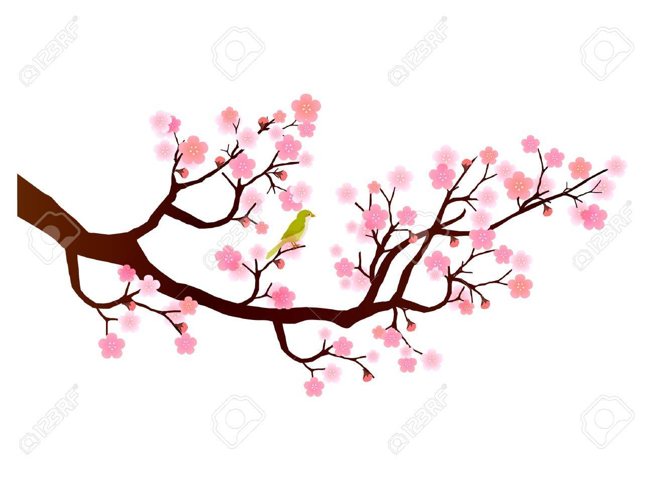 1300x975 Plum Flower Icon Royalty Free Cliparts, Vectors, And Stock
