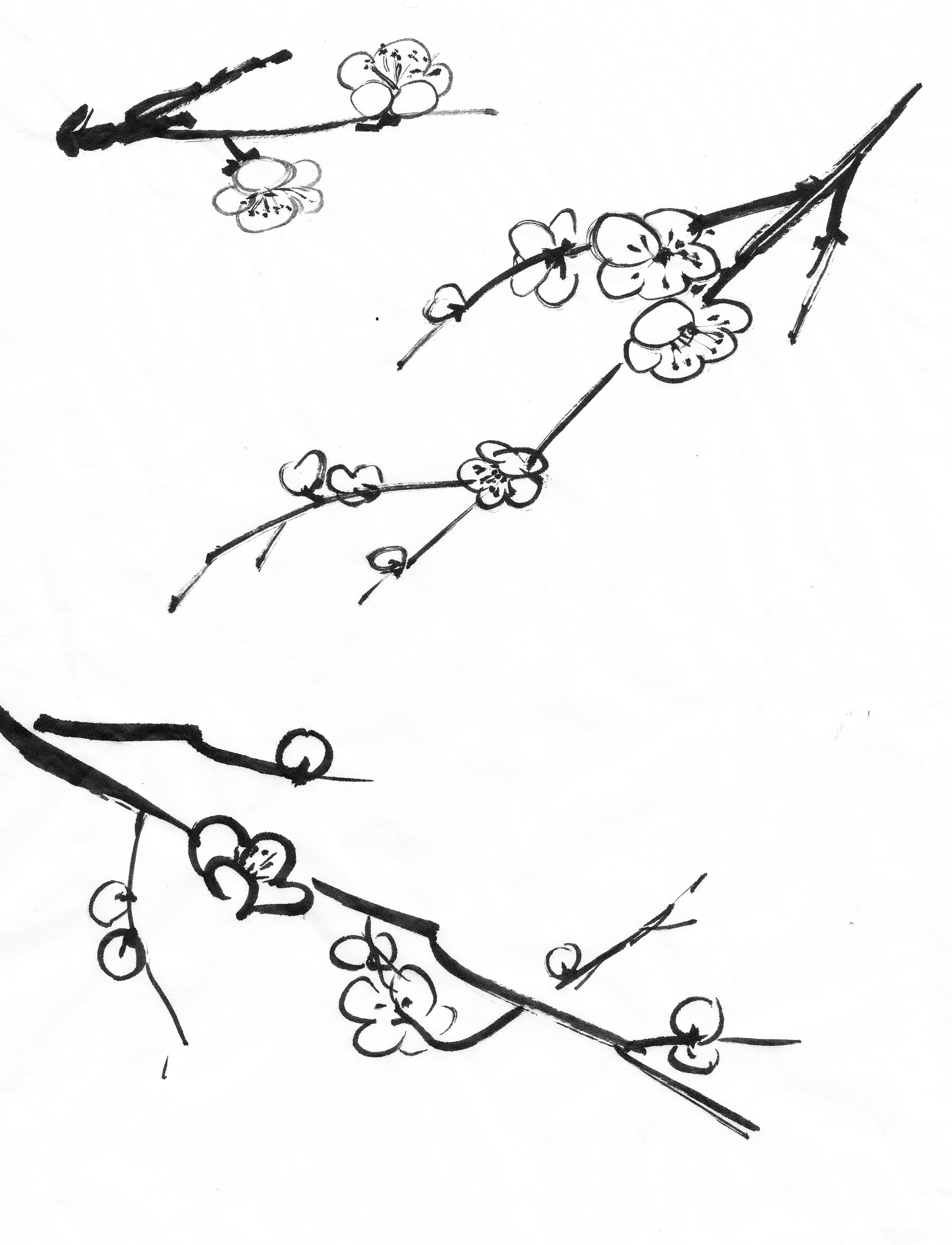 2339x3058 Back To Basics 3 Plum Blossom (Part 1) Chinese Painting