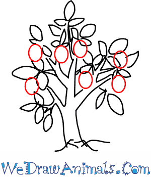 300x350 How To Draw A Plum Tree