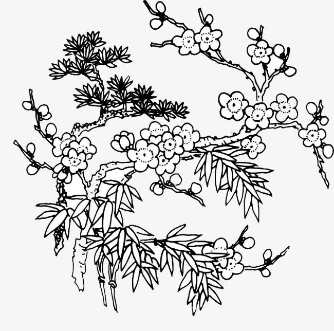 650x644 Bloom Line Drawings, Plum Appropriate Amount, Plum Ornament, Plum