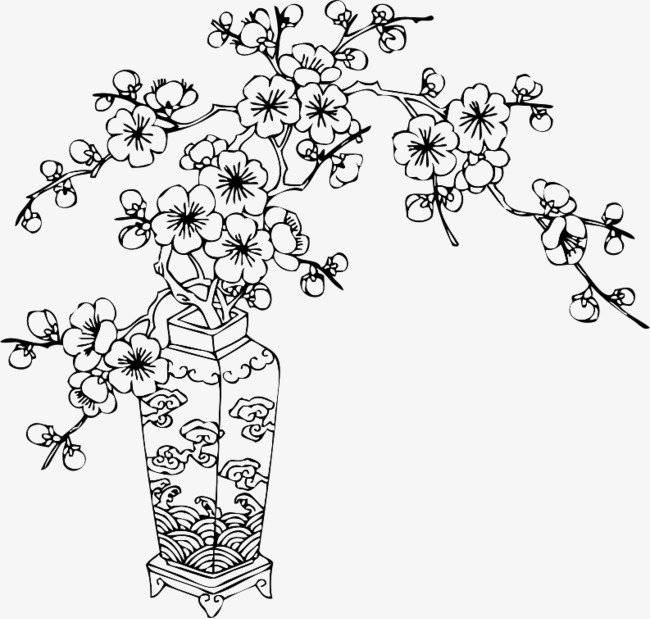 650x619 Plum Line Drawing, Plum Flower, Line Drawing, Vase Png Image