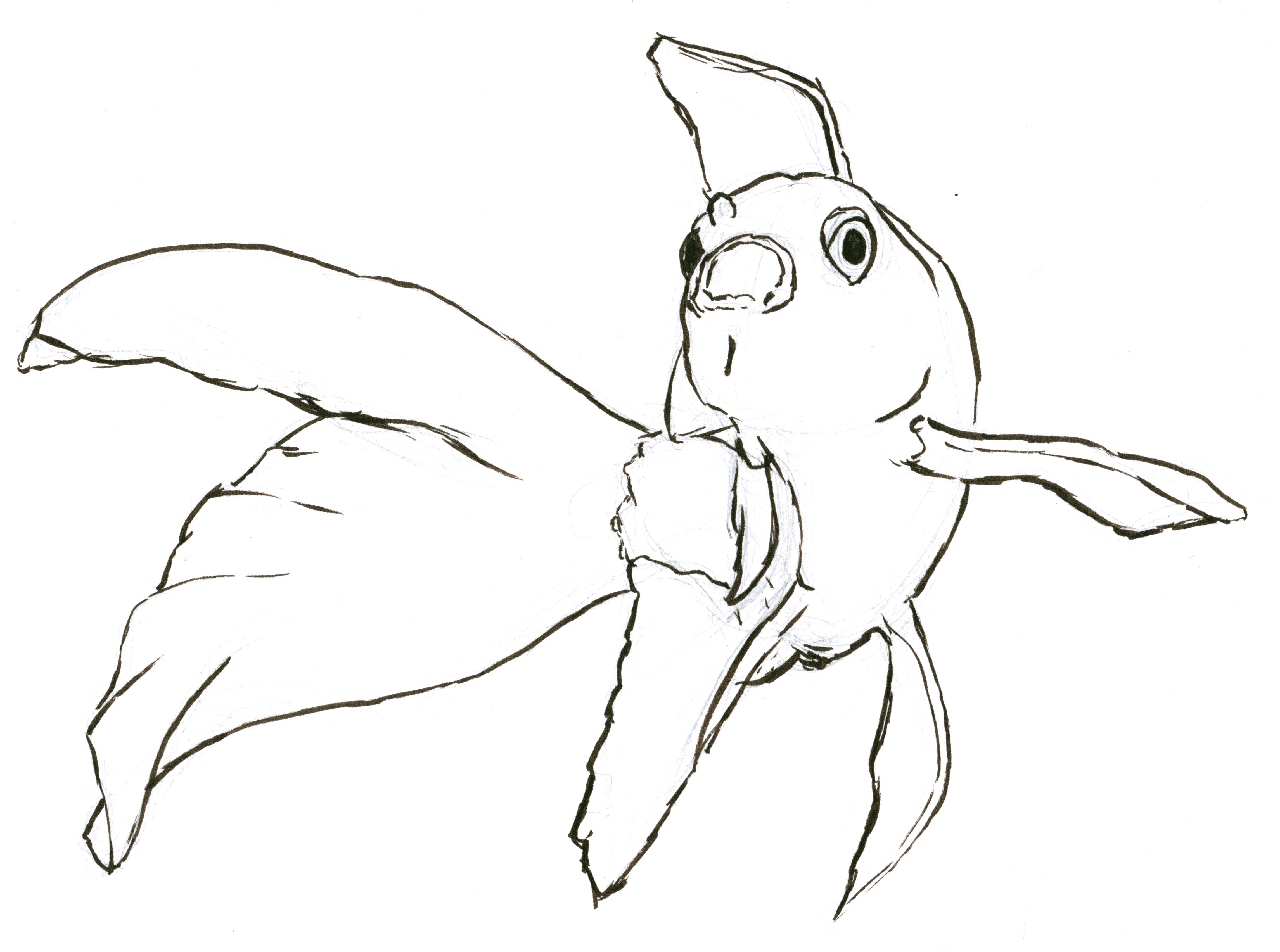 4580x3407 Weekend Inky Drawings Baby Rhino, Goldfish, Pluto Amp A Hand