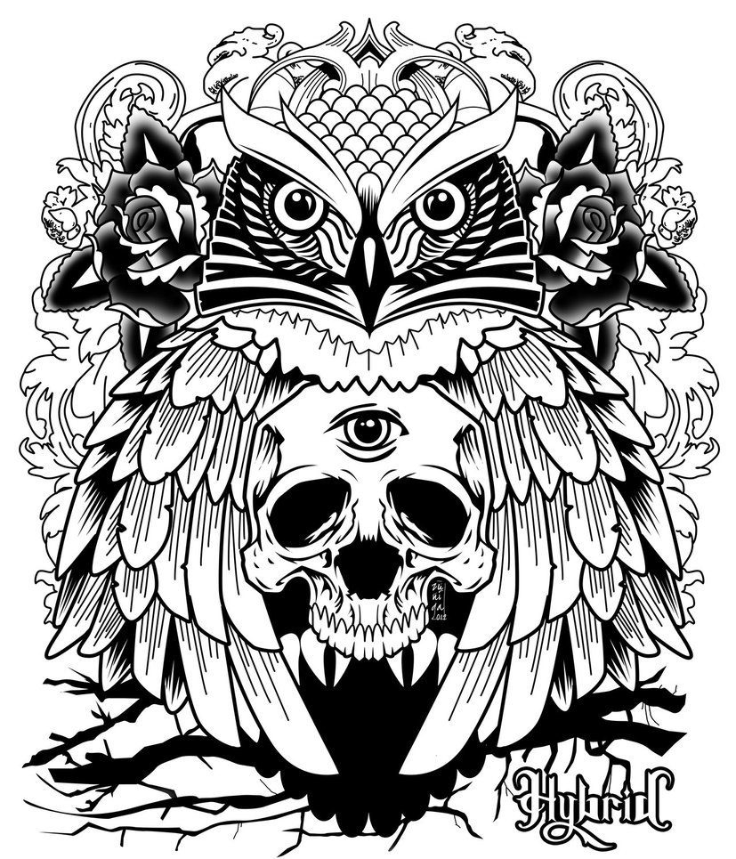 827x965 Owl Art Tumblr Owl Details Owl Art And Owl