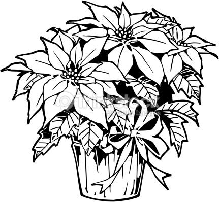 431x398 Black And White Poinsettia Clipart