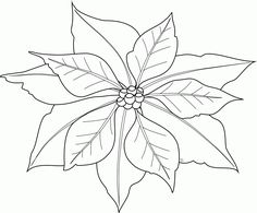 236x195 How To Draw A Poinsettia Step 5