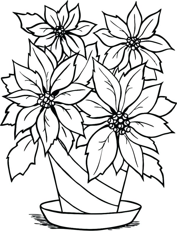 600x826 Poinsettia Coloring Page Poinsettia In Flowerpot Coloring Page