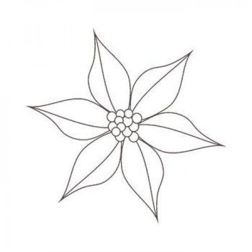 Poinsettia Drawing Outline