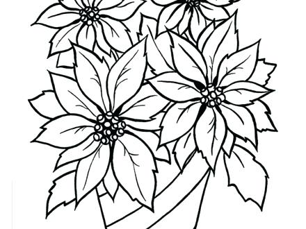 440x330 Poinsettia Coloring Pages Poinsettia Coloring Pages Poinsettia