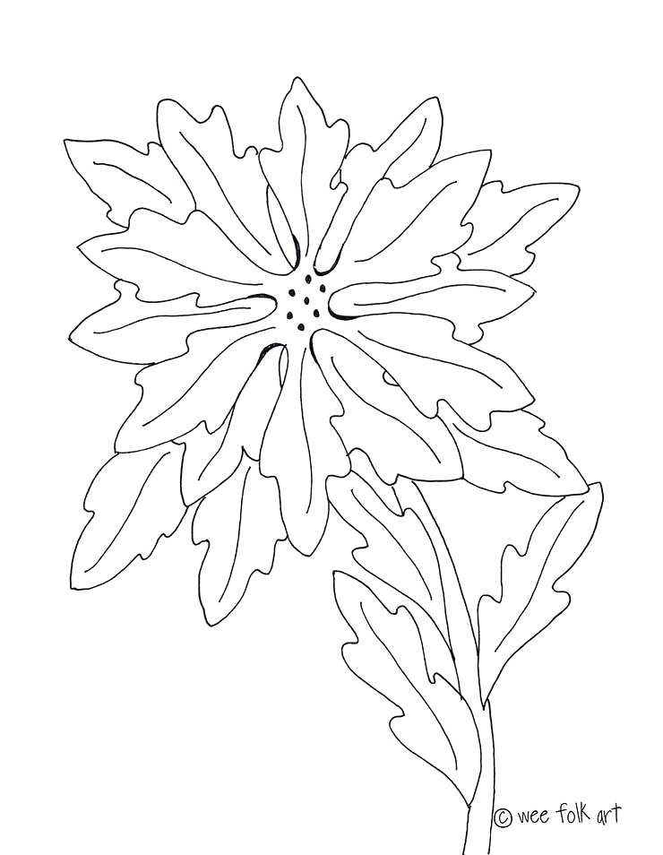740x954 Poinsettia Coloring Pages Poinsettia Outline 5 Poinsettia Coloring