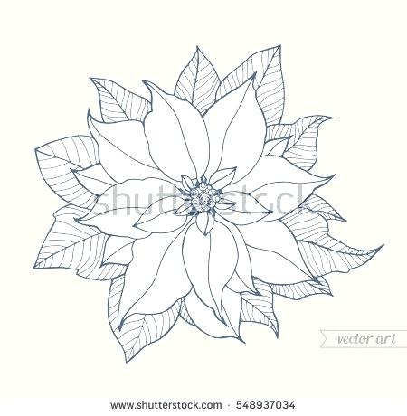 450x460 Poinsettia Coloring Page Poinsettia In Flowerpot Coloring Page