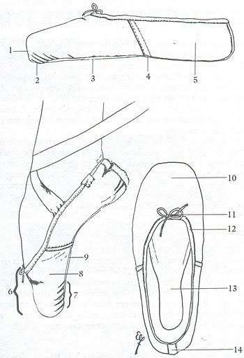 350x512 The Anatomy Of A Pointe Shoe