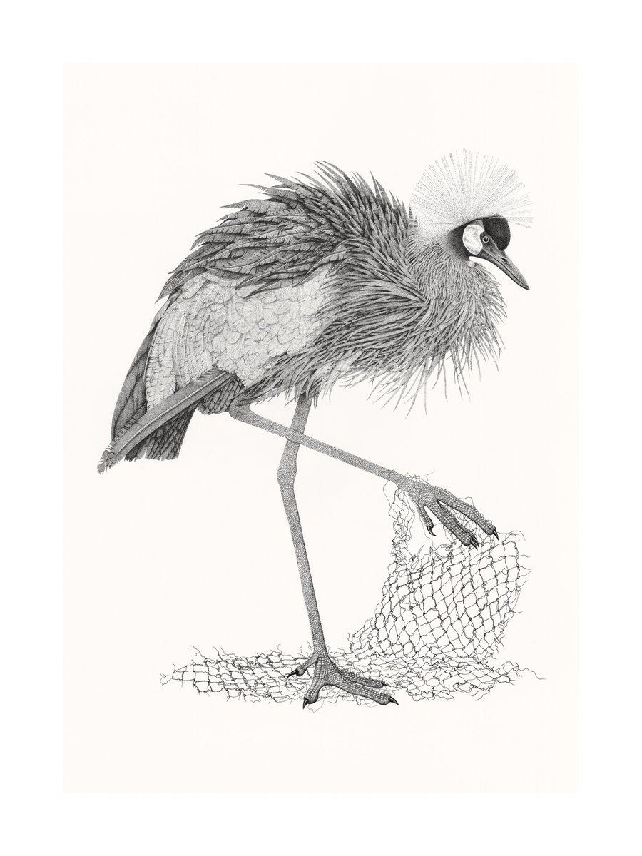 900x1200 Artist Rachel Card On Twitter Crowned Crane, Pointillism