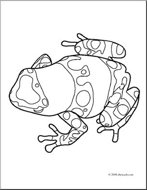 304x392 Clip Art Frogs Yellow Banded Poison Dart Frog (Coloring Page) I