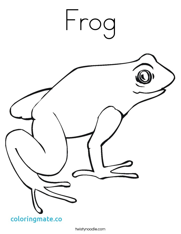 Poison Dart Frog Drawing at GetDrawings.com | Free for personal use ...